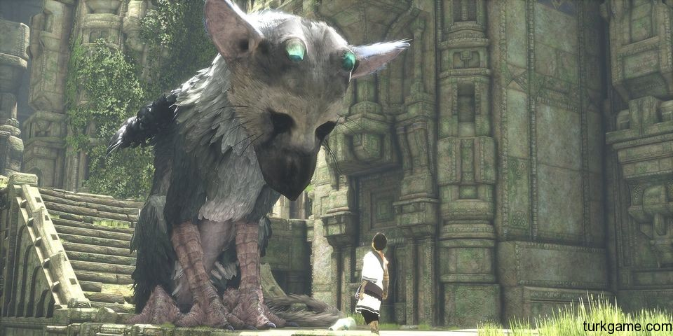 the-last-guardian-2