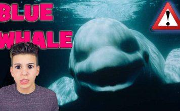 Blue Whale Oyunu Yasaklandı ve Yapımcısı Tutuklandı 2